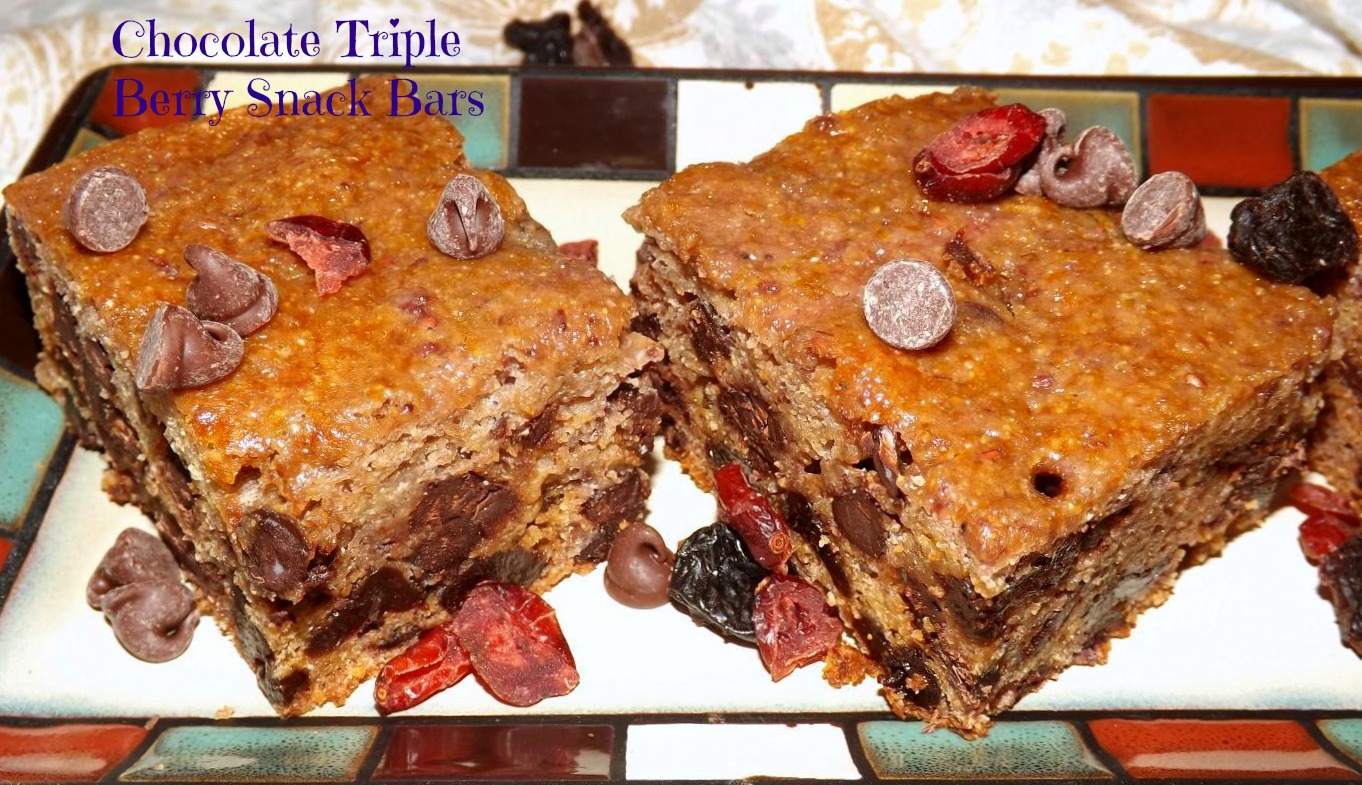 Chocolate Triple Berry Snack Bars
